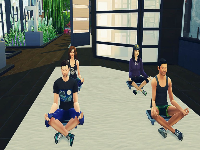 Simselves Meditating